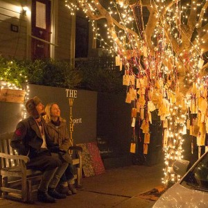 Vanessa Sabarese reaps an unusual harvest on her Wishing Tree